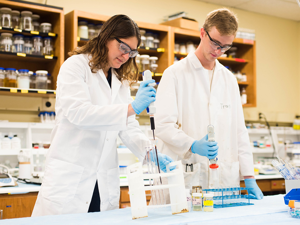 two people working with test tubes in lab